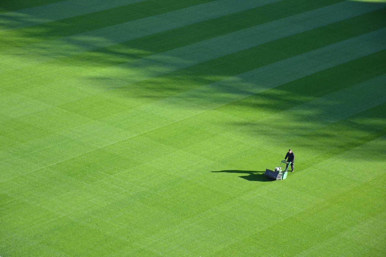 Kosiarka ogrodowa, czyli łatwa pielęgnacja trawnika